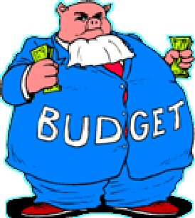 Budget-hog.jpg