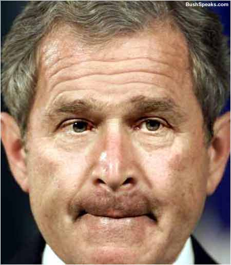 bush_noteef.jpg